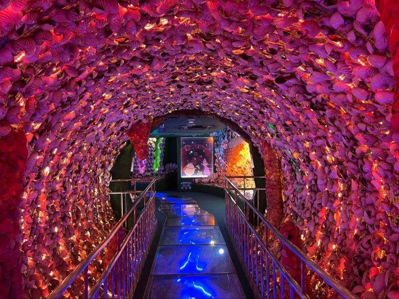 愛知県蒲郡市・竹島ファンタジー館の時空トンネル